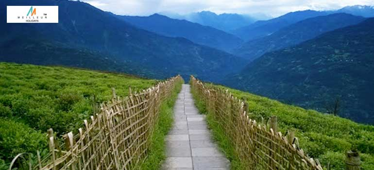 SIKKIM SILK ROUTE TOUR  Package Tour in Summer