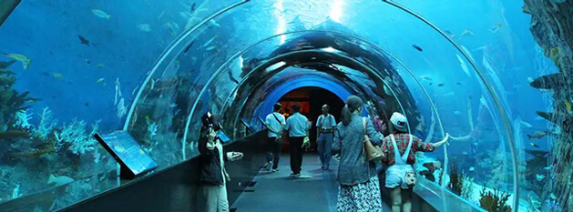 Singapore Package Tour from India